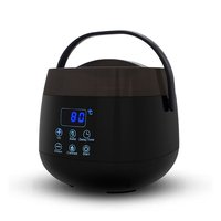 carevas-Wax Warmer Hair Removal Home Waxing with LED...