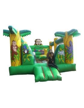 Megastar Megabounce & Jump Slide Jungle Style