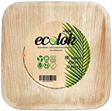 "ecolok biodegradable square plate 10"" (pack of 12)"