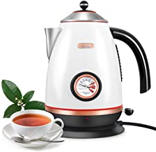 Electric Kettle with Thermometer