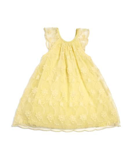 Lace Frill Sleeve Dress