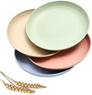 8.8 Inch Wheat Straw Plates Set of 4